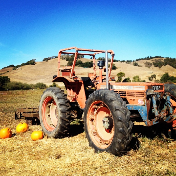Petaluma Pumpkin Patch Tractor