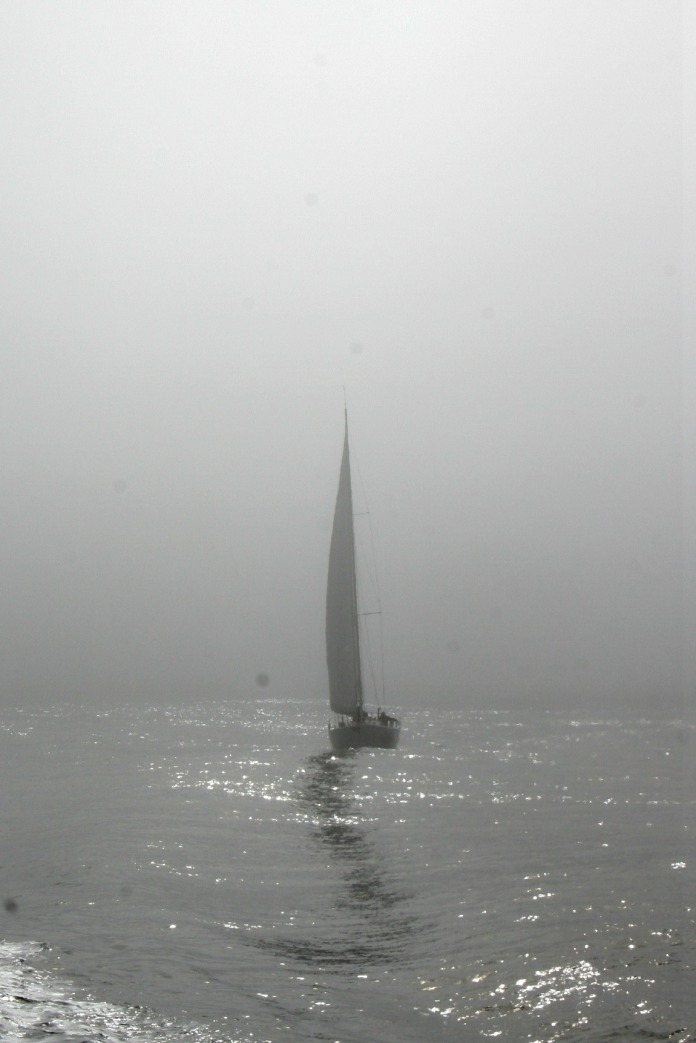 A sailboat in the San Francisco bay fog